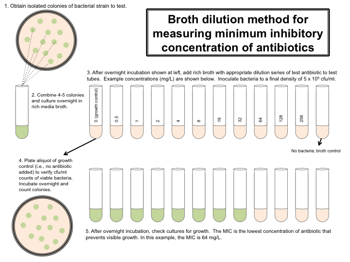 10 fold serial dilution method in microbiology