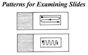Patterns for Examining the slide