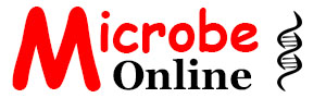 microbeonline